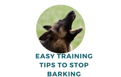 Tips to Curb German Shepherd Barking Problems