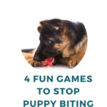 4 Fun Games to Stop German Shepherd Puppy Biting