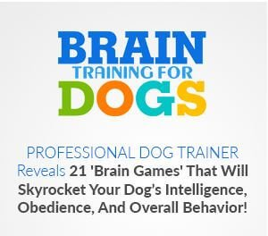Brain Training for Dogs Review - Obedience and Behavior
