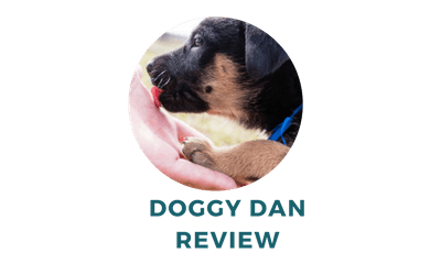 Review of Doggy Dan Training Program