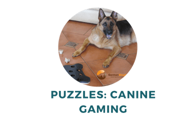 fun puzzle games for dogs