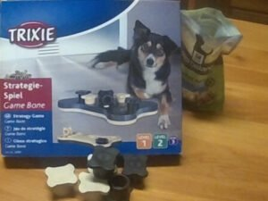 trixie-game-bone-puzzle-what-is-in-the-box