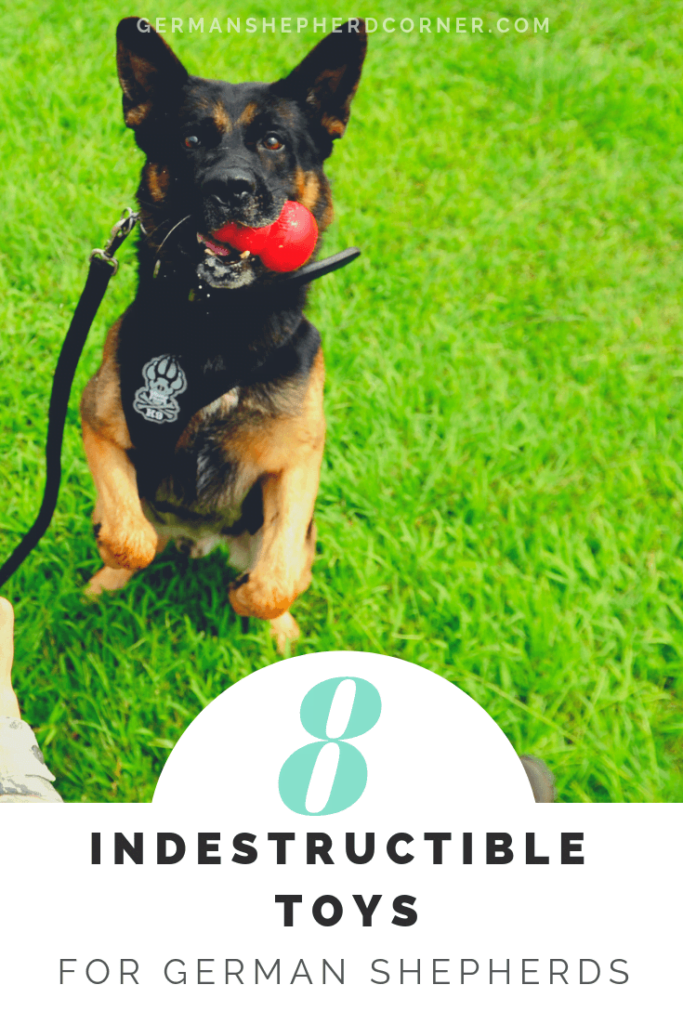 8 Indestructibe Dog Toys for German Shepherds