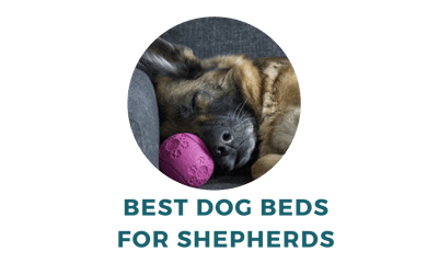 The Best Dog Beds For German Shepherds You Should Check Out German