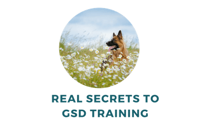 Are There Secrets to GSD Training