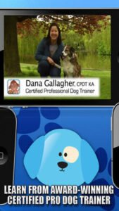 Dana Gallagher Certified Professional Dog Trainer