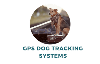 GPS Dog Tracking System