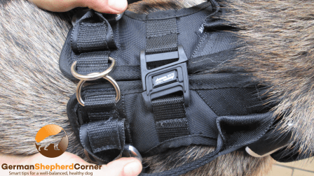 EzyDog Safety Harness for Dogs