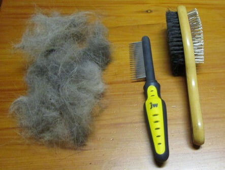 Coat grooming tools