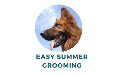 Easy Shepherd Grooming for Summer