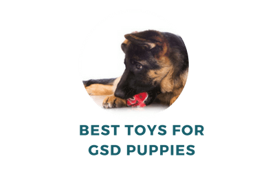 Best Toys for Your Shep Puppy