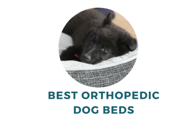 Comfy Orthopedic Dog Beds