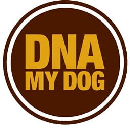 DNA My Dog - Best Dog DNA Test Kit Reviews