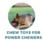 Tough Toys for Power Chewers