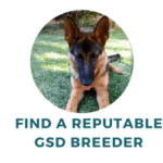 find reputable german shepherd puppies