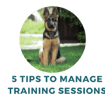 Manage Dog Training Sessions