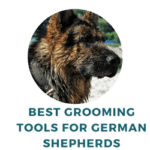 best grooming tools for german shepherds